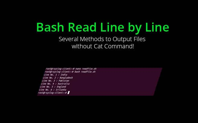 bash read file line by line